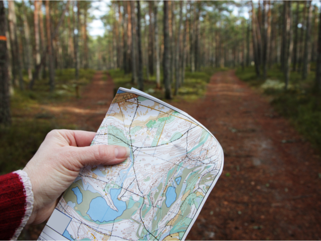 A person holding a map at the beginning of a wooded trail