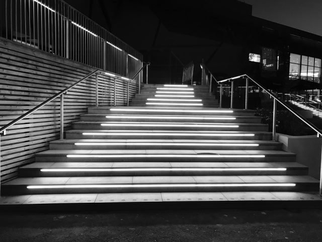 black and white photo of stairs heading up