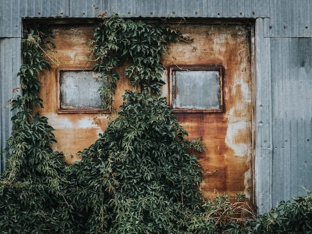 ivy covered rusted doors suggesting years of disuse
