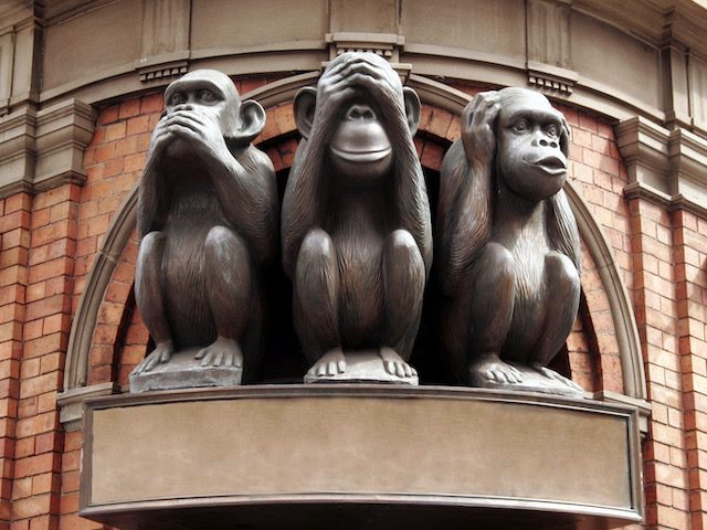 speak,  see and hear no evil monkeys