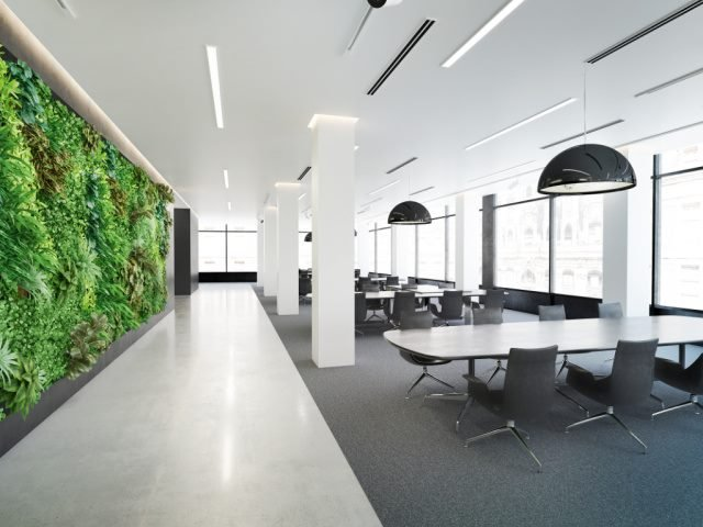 vertical green wall in a modern office space