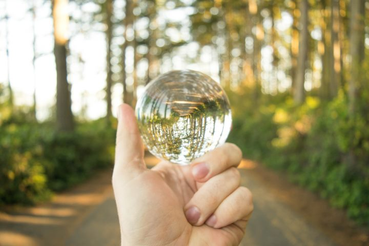 hand holding a crystal ball in the forest on a road